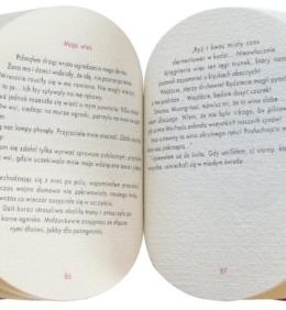 Wydanie ekskluzywne książki Fletnia chińska