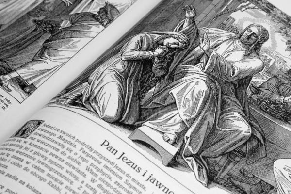Artystyczne wydanie Pisma Świętego w obrazach