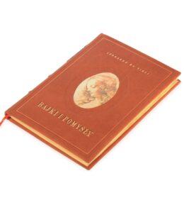 Artystyczna książka Leonarda da Vinci, Bajki i pomysły