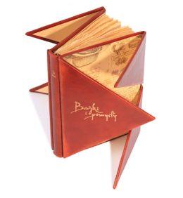 Oprawa artystyczna książki Leonarda da Vinci, Bajki i pomysły