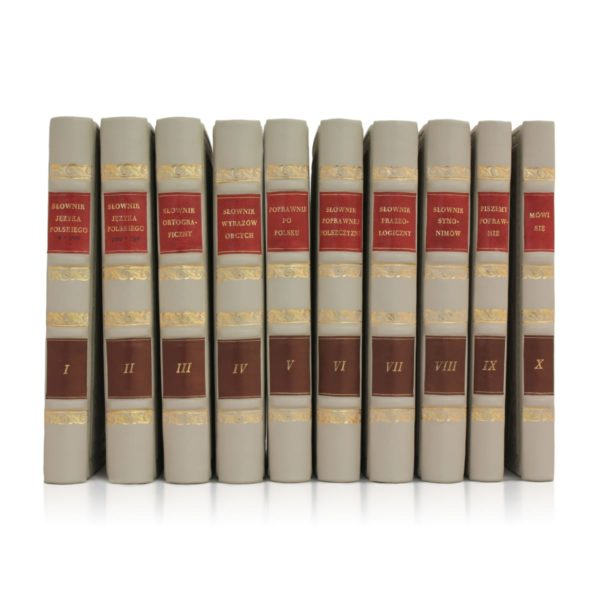Biblioteka prywatna złożona ze Słowników języka polskiego