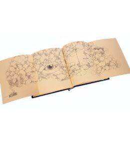 Artystyczne wykonanie na przykładzie książki Twaina Marka, Cnoty i inne wady. Aforyzmy