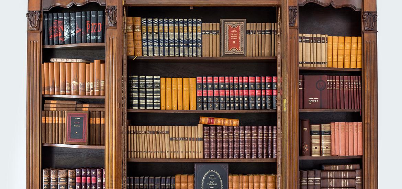 Biblioteka domowa z książkami